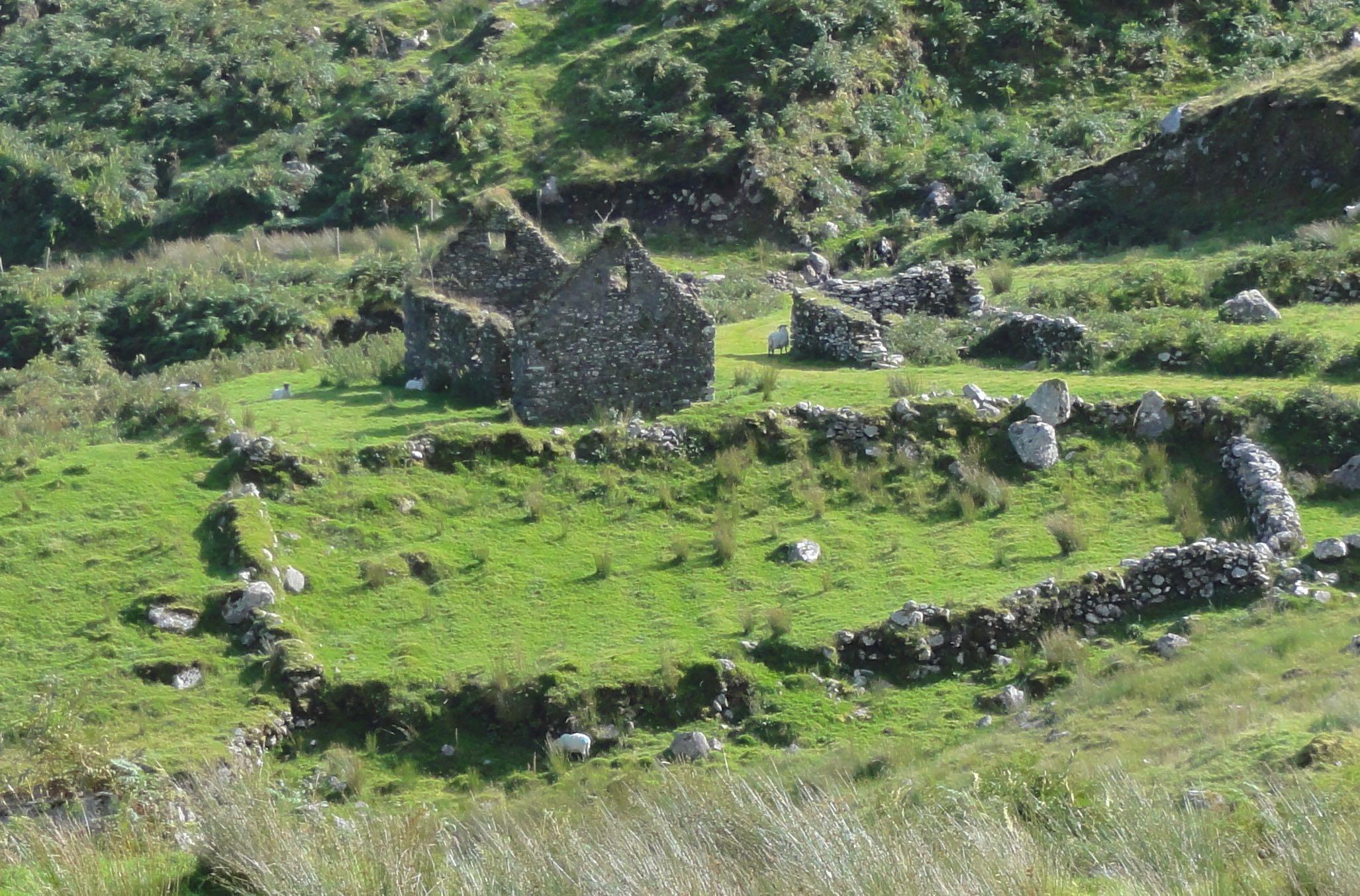 Black Valley Ruin