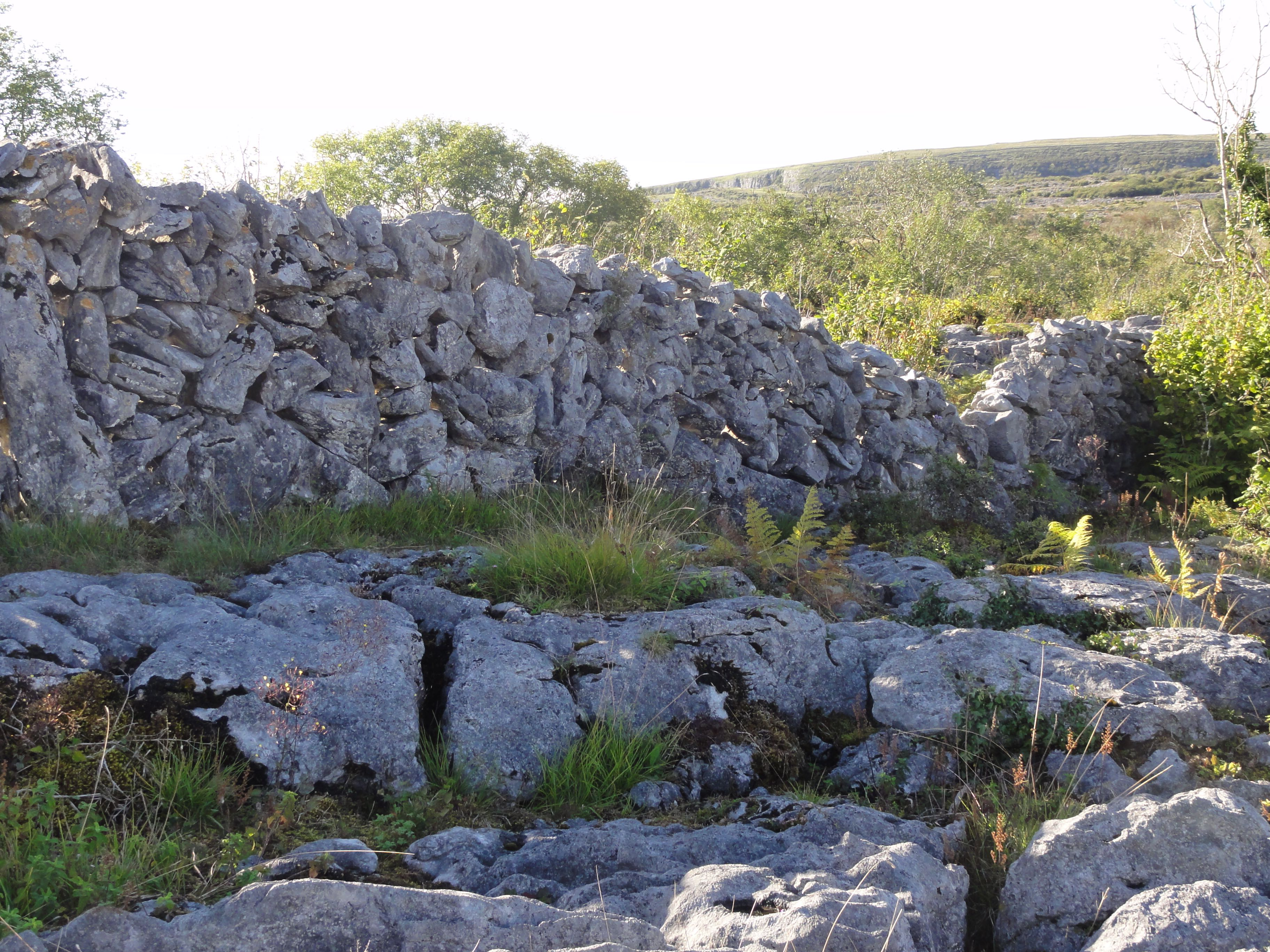 Wall in the Burren